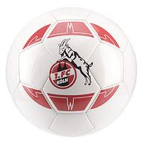 Fan-Ball 16/17 Gr. 5