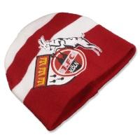 Mütze Logo/Stadtwappen